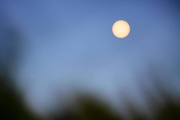 Photograph - Venus Transit Dreamscape by Jason Politte