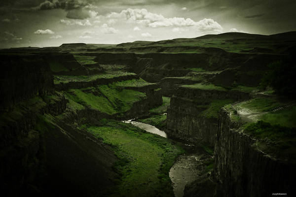 Photograph - Verdant Majesty by Joseph Noonan