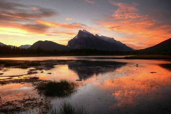 Vermillion Lakes Wall Art - Photograph - Vermilion Lakes Sunrise by Marko Stavric Photography