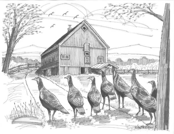 Drawing - Vermont Wild Turkeys by Richard Wambach