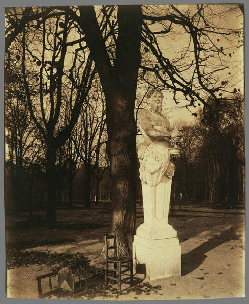 Wall Art - Drawing - Versailles, Coin De Parc Eugène Atget, French by Litz Collection
