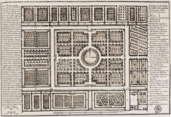 Photograph - Versailles: Gardens, 1685 by Granger