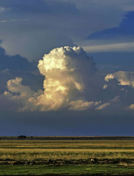 Amboseli Wall Art - Photograph - Vertical Cumulus Clouds by Babak Tafreshi