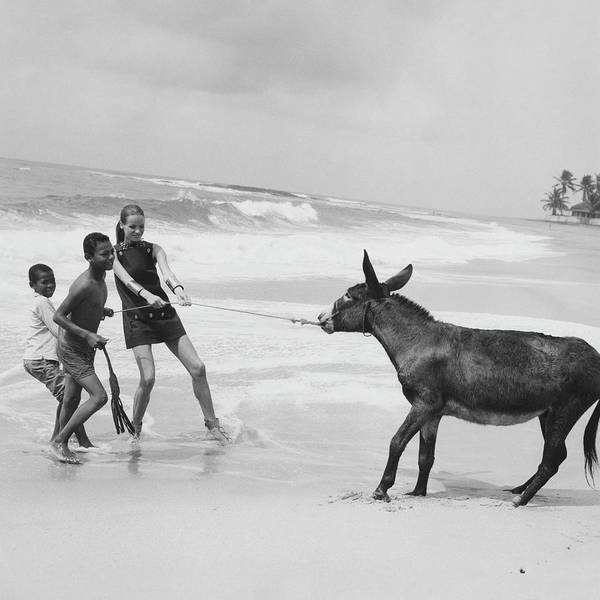 Two People Photograph - Veruschka Von Lehndorff And Two Children Pulling by Franco Rubartelli