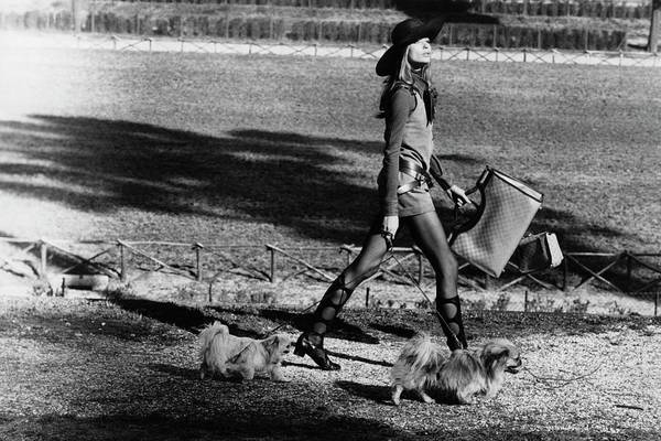 Luggage Photograph - Veruschka Walking Dogs In Rome by Henry Clarke