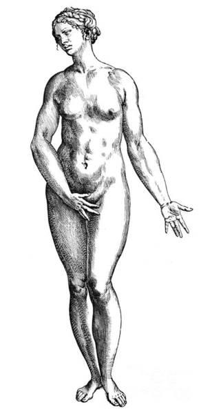 De Humani Corporis Fabrica Photograph - Vesalius: Female Nude by Granger