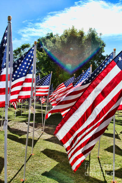 Photograph - Veteran's Day The Healing Fields 1 By Diana Sainz by Diana Raquel Sainz