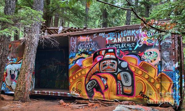 Photograph - Vibrant Train Wreck Colors In The Rain Forest by Adam Jewell