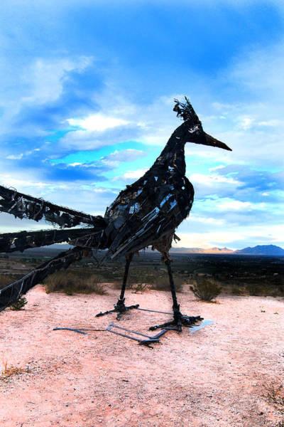 Photograph - Vibrant Trash Bird by Maggy Marsh