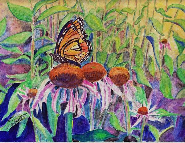 Brook Mixed Media - Viceroy And Coneflowers by Charlene Corman-Brooks