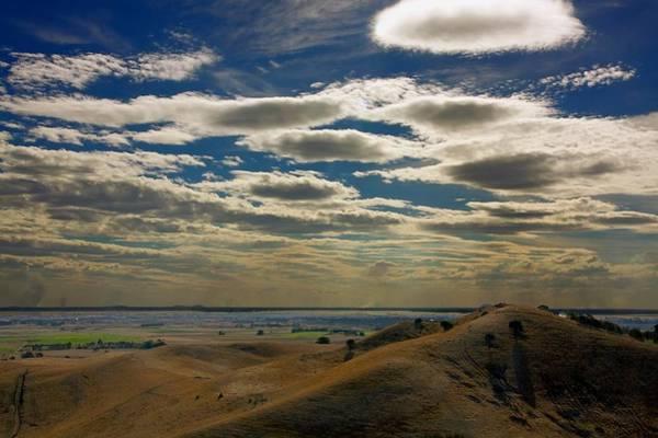 Photograph - Victoria Cattle Farm #3 by Stuart Litoff