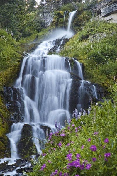 Photograph - Vidae Falls And Flowers 2 by Lee Kirchhevel