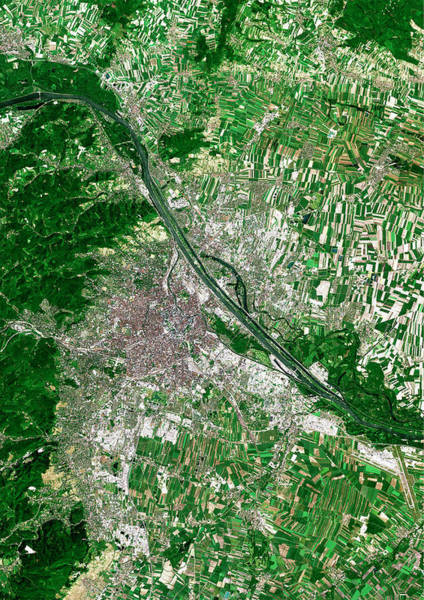 Vienna Photograph - Vienna by Planetobserver/science Photo Library