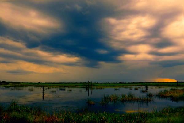 Photograph - Viera Wetlands by Grace Dillon