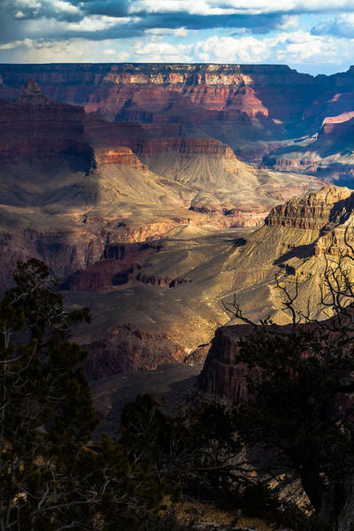Photograph - View Across The Canyon by Ed Gleichman