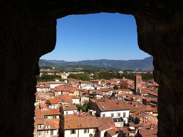 View From A Tower Window In Lucca Art Print