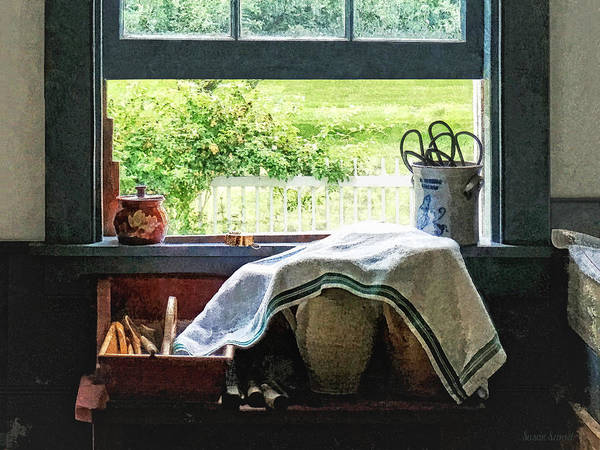 Photograph - View From Kitchen Window by Susan Savad