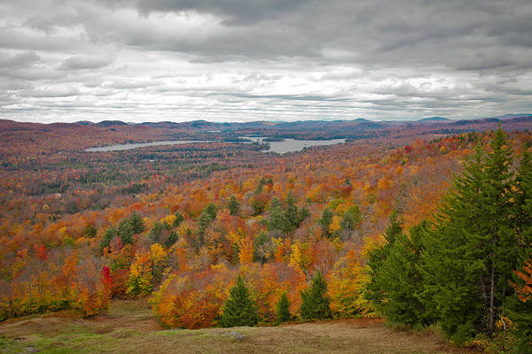 Photograph - View From Mccauley Mountain Iv by David Patterson