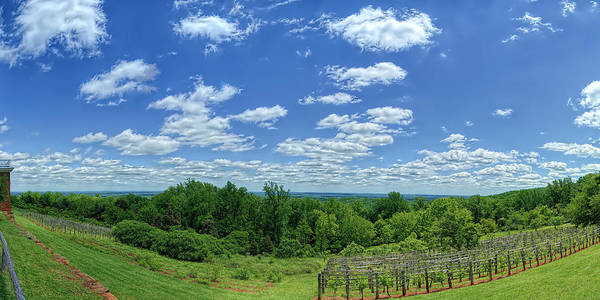Photograph - View From Monticello by Metro DC Photography
