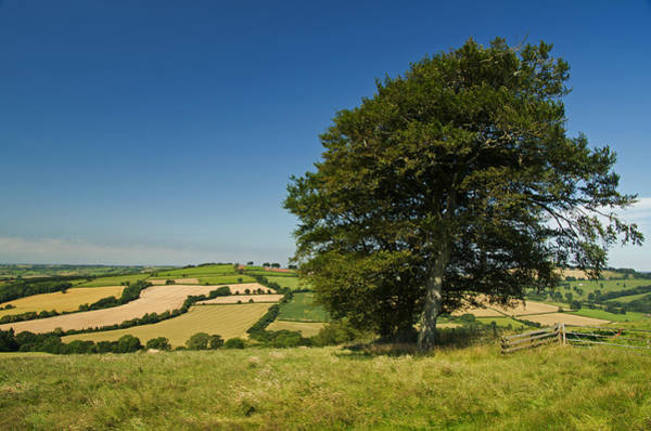 Photograph - View From Raddon Top by Pete Hemington
