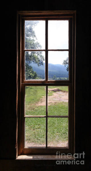 Photograph - View From The Cabin by Todd Blanchard