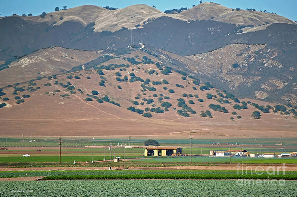 Photograph - View From The Crops by Susan Wiedmann