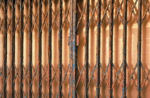 Corrosion Photograph - View Of A Metal Gate Suffering Severe Corrosion by Alex Bartel/science Photo Library