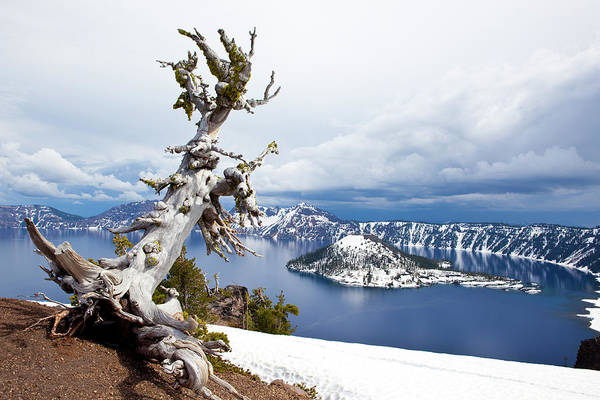 Wall Art - Photograph - View Of A Snow Covered Island In Crater by Joshua Huber