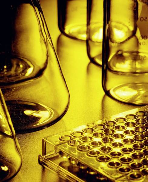 Wall Art - Photograph - View Of Assorted Chemistry Glassware And Equipment by Matt Meadows/science Photo Library