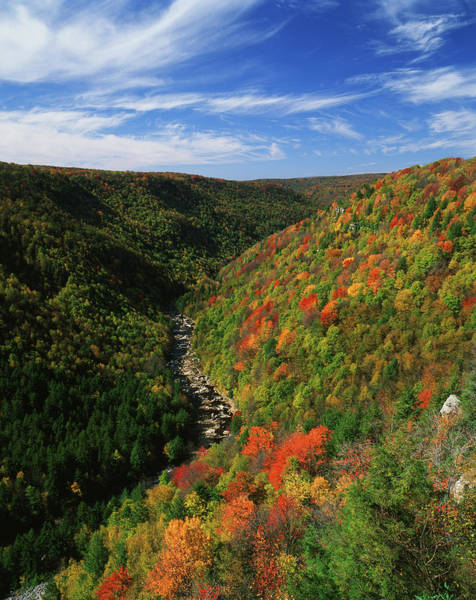 West Virginia Photograph - View Of Blackwater Canyon In Autumn by Danita Delimont