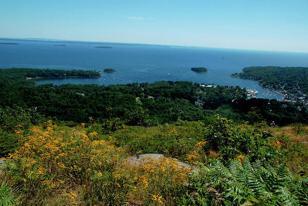 Camden Photograph - View Of Camden, Maine by Andrea Sperling