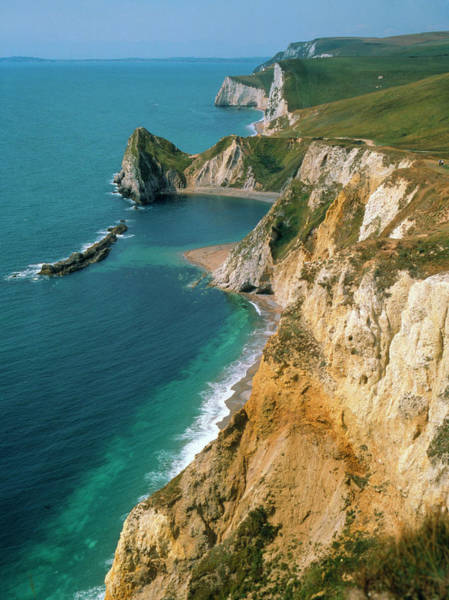 Wall Art - Photograph - View Of Dorset Coastline by Martin Land/science Photo Library