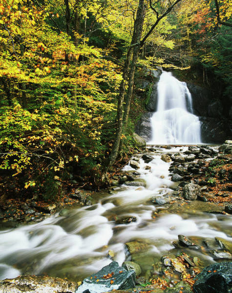Vermont Photograph - View Of Moss Glen Falls In Autumn by Danita Delimont