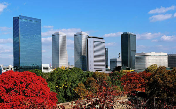 Kansai Wall Art - Photograph - View Of Osaka Business Park In Autumn by Panoramic Images