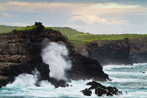 Galapagos Islands Photograph - View Of Punta Suarez, Espanola Island by Michael Nolan / Robertharding