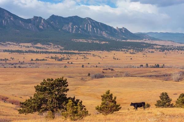 Ranch Photograph - View Of Ranch by Natalia Kochina