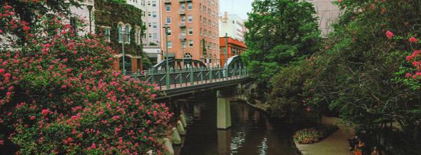 Riverwalk Photograph - View Of San Antonio River Walk, San by Panoramic Images