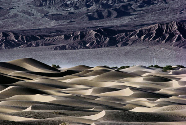 Death Valley Photograph - View Of Sand Dunes In Death Valley by Peter Menzel/science Photo Library