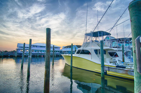 View Of Sportfishing Boats At Marina Art Print