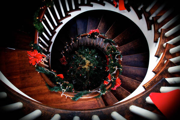 Photograph - View Of The Christmas Tree From The Spiral Staircase by Eleanor Abramson