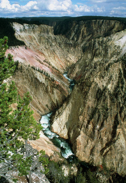 Yellowstone Canyon Photograph - View Of The Grand Canyon Of The Yellowstone River by Tony Craddock/science Photo Library