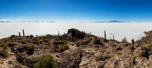 Isla Wall Art - Photograph - View Of The Isla Del Pescado, Salar De by Panoramic Images