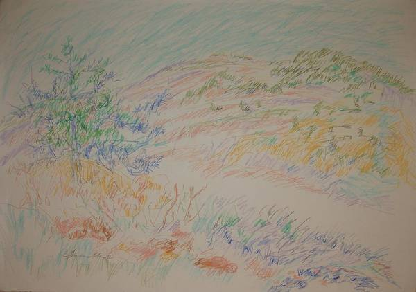 Spontaneous Drawing - View Of The Jerusalem Forest by Esther Newman-Cohen
