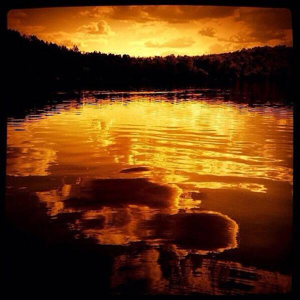 The Canadian Photograph - View Of The Lake At Sunset by Cristina Stefan