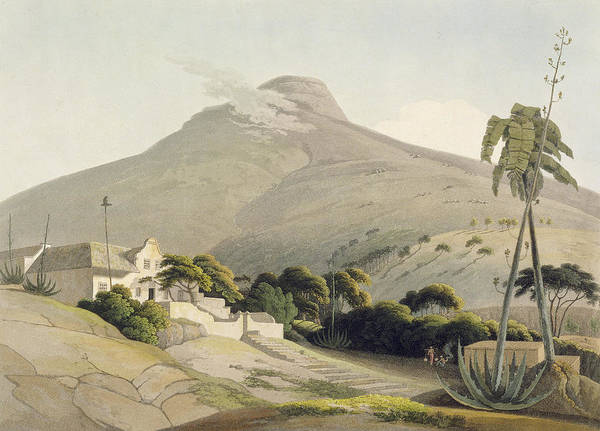 Palm Trees Drawing - View Of The Lions Head, Plate 28 by Samuel Daniell