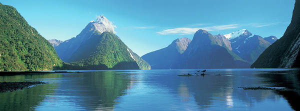 Milford Photograph - View Of The Milford Sound, Fiordland by Panoramic Images