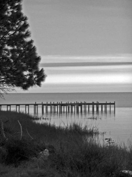 Photograph - View Of The Old Dock by Jennifer Robin