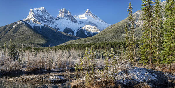 Canmore Photograph - View Of Trees With Snowcapped by Panoramic Images