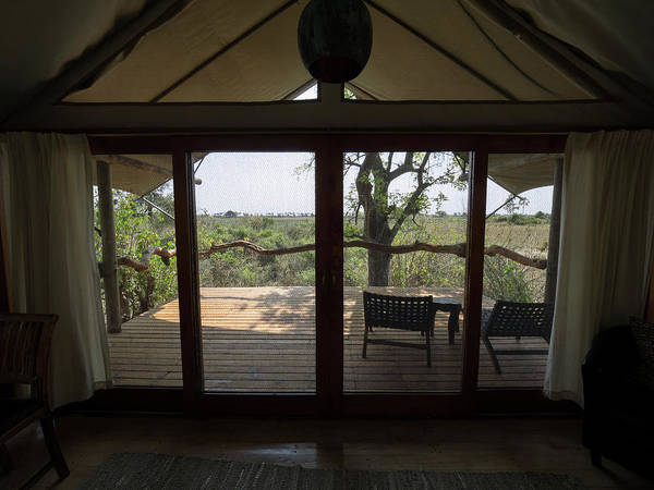 Okavango Delta Photograph - View Out Of Tent At Tubu Tree Camp, Jao by Panoramic Images