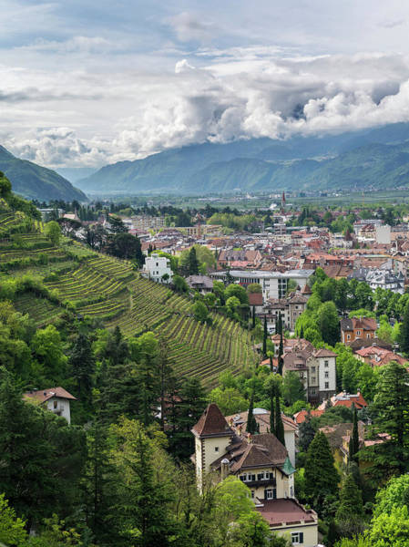 Wall Art - Photograph - View Over The City Of Meran (merano by Martin Zwick